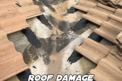 roof-damage-4